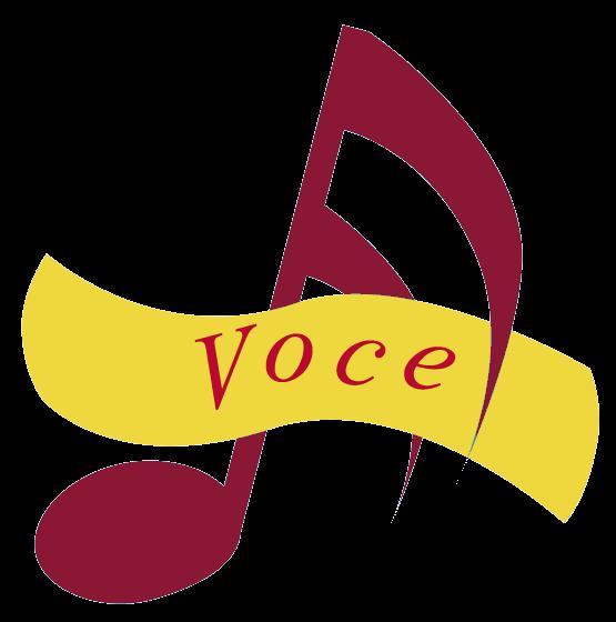 vocelogoblue